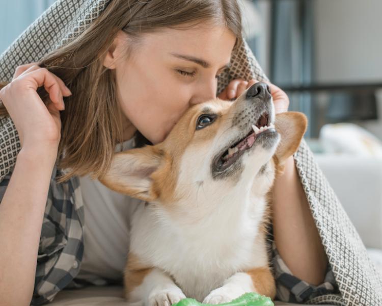 4 tips voor het rouwen om je hond